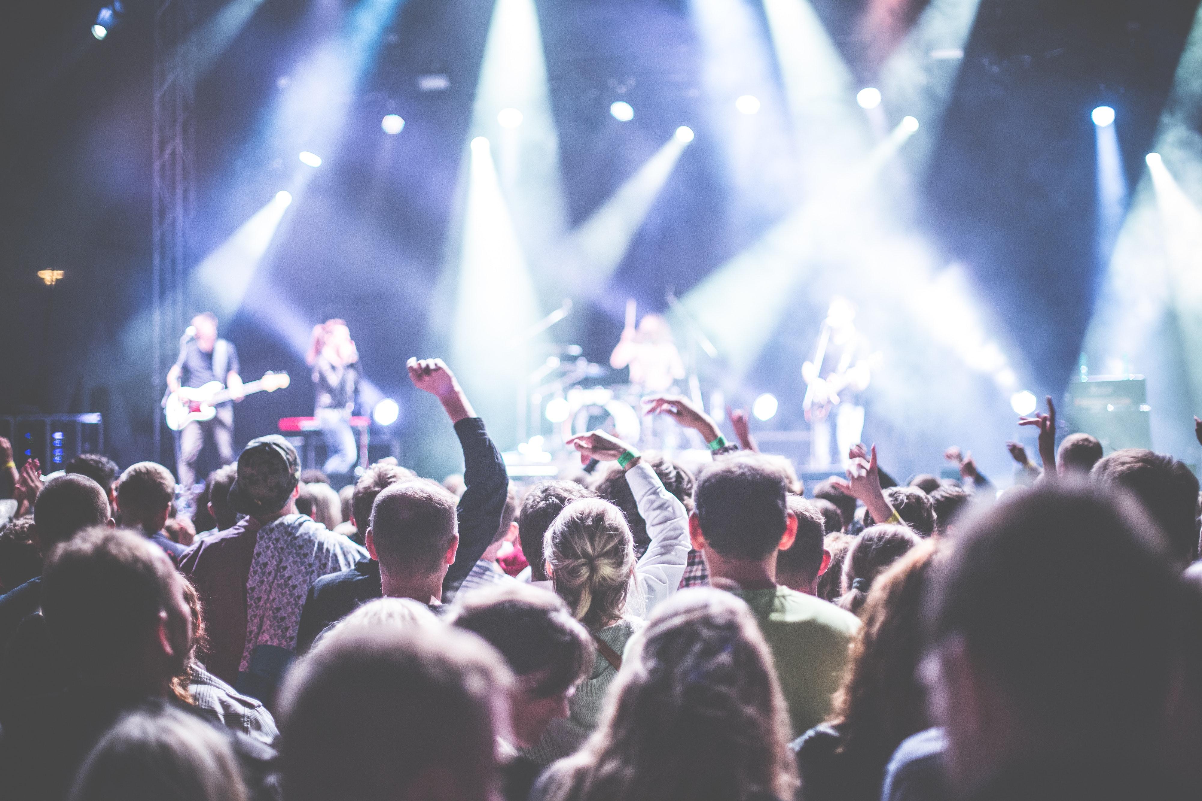 Festival koncert